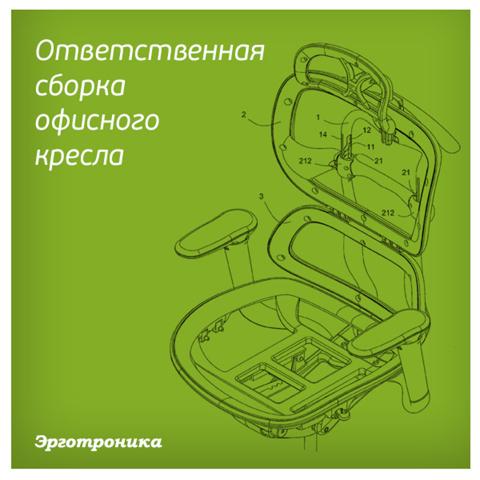 Сборка осанка/школярик