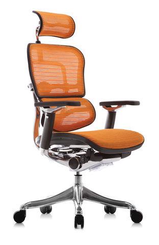 Компьютерное кресло Ergohuman PLUS
