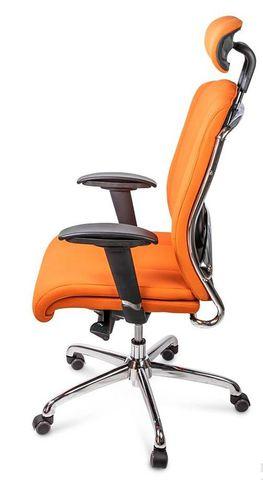 Кресло руководителя Ergo Plus (Эрго Плюс)