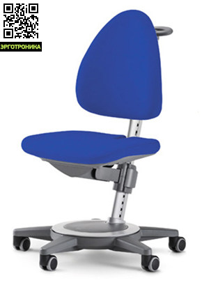Чехол для кресла Maximo / Maximo 15Аксессуары к креслам<br>Дополнительная защита стула<br>Удобный уход за стулом <br>Сохранение товарного вида на долго.<br>