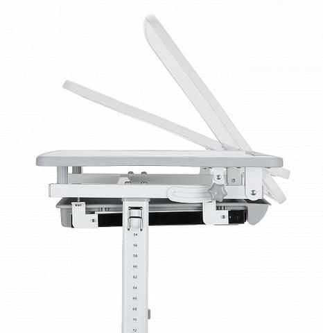 Комплект парта и стульчик Mealux EVO-06